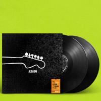 radioeins Albaum Doppel-Vinyl